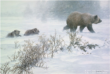 """John Seerey – Lester Limited Edition Print:""""Keeping Pace-Grizzly With Cubs"""""""