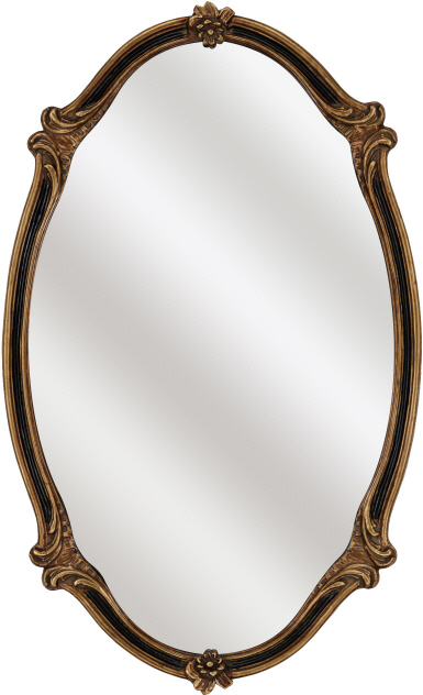 Decorative Wall Mirror By Paragon Black Gold Oval Mirrors
