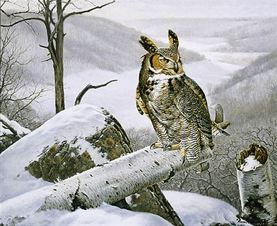 """Marc Hanson Limited Edition Print:""""Master Of The Valley-Great Horned Owl"""""""