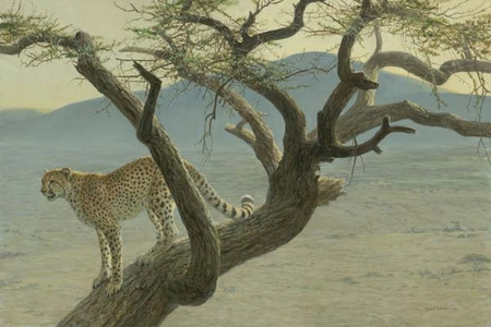 """Robert Bateman Hand Signed And Numbered Limited Edition Print  and Canvas Giclee :""""Lewa Cheetah"""""""