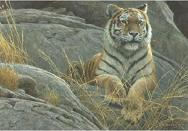 """Robert Bateman Hand Signed And Numbered Limited Edition Print  and Canvas Giclee :""""Monarch of Asia"""""""