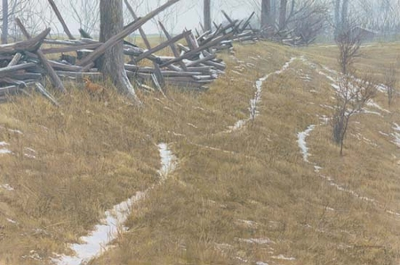 """Robert Bateman Handsigned and Numbered Limited Edition:""""Pasture Trails – Red Fox """""""