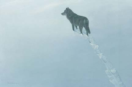"""Robert Bateman Handsigned & Numbered Limited Edition Print:"""" New Territory-Black Wolf"""""""