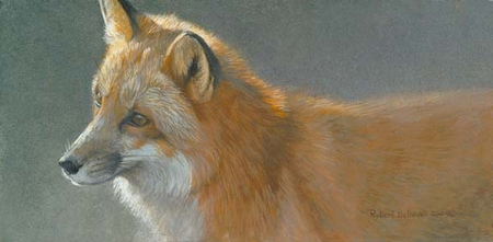 """Robert Bateman Handsigned & Numbered Limited Edition Print:""""Questing Red Fox"""""""