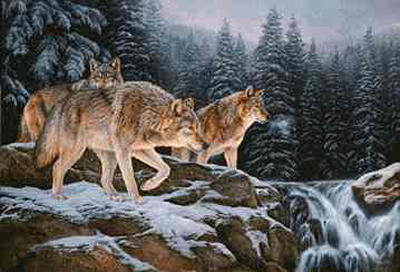 "Rosemary Millette Limited Edition Print: ""Spirit of the Wild-Wolf"""