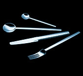 Carl Mertens Certo 5-piece setting Flatware