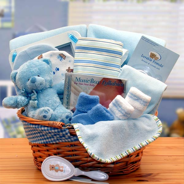 New baby gift baskets simply the baby basics new baby boy gift simply the baby basics new baby boy gift basket negle