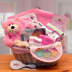 Simply The Baby Basics New Baby Girl Gift Basket