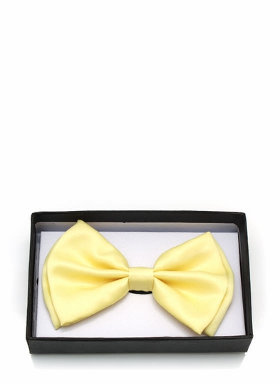 Fashion Bow Tie