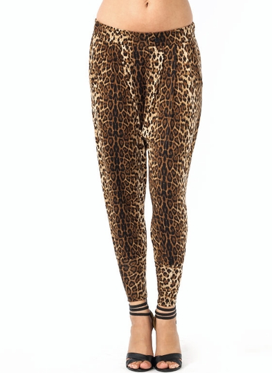 Go Low Leopard Harem Pants