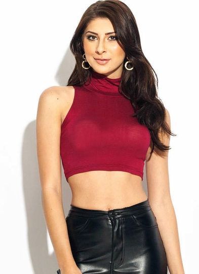 Turtle Neck Crop Top
