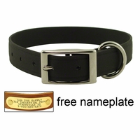 buy discount  CLEARANCE -- 1 in. K-9 Komfort EverFlex Standard Dog Collar with Stainless Steel Hardware