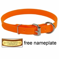 buy discount  3/4 in. Day Glow D-End Puppy / Small Dog Collar