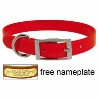 buy discount  3/4 in. Day Glow Standard Puppy / Small Dog Collar