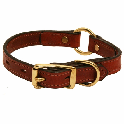 3/4 in. Mendota Hunt Dog Leather Center Ring Puppy / Small Breed Collar -- 10/12 in.