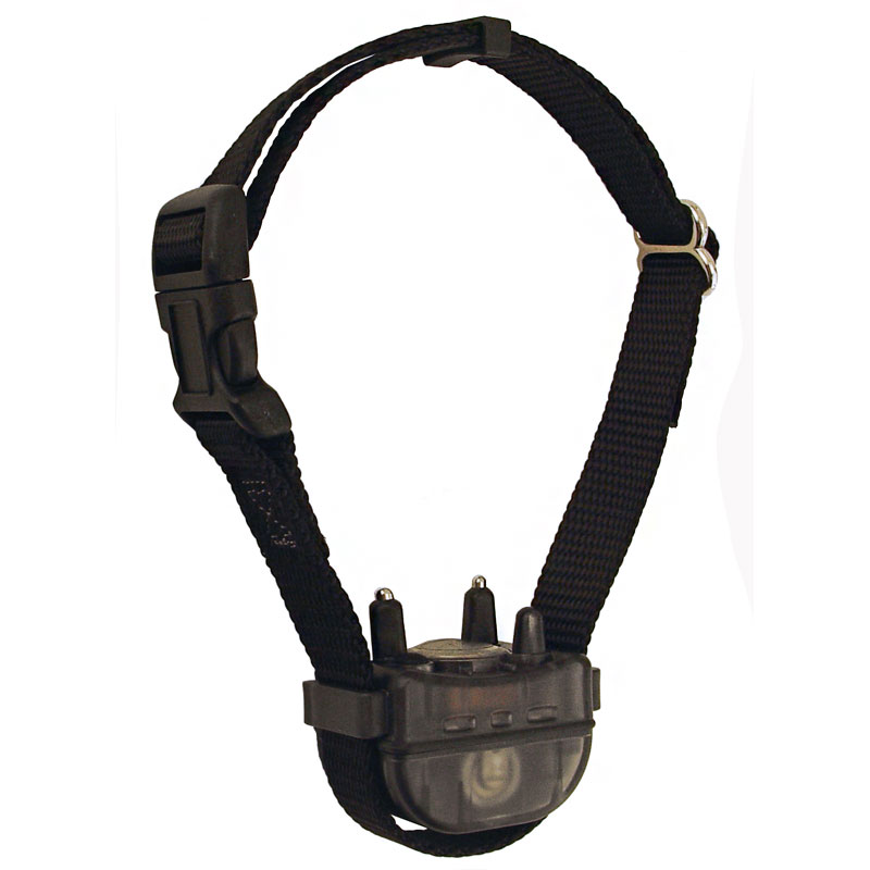GDS 3/4 in. Quick Release E-Collar Strap. $9.99.