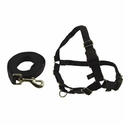 buy discount  BLACK Easy Walk Reflective Harness and Leash by Premier