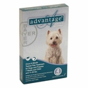 buy discount  CLEARANCE -- Advantage Flea Topical Treatment 11 - 20 pounds