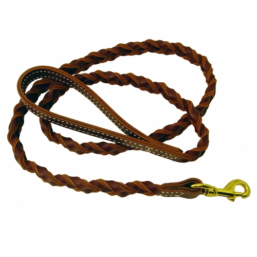 Coyote - Woven 5 ft. Snap Lead