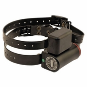 buy discount  DT Systems Bark Collars