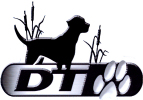 DT Systems Products