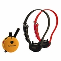 buy discount  Educator ET-402 Remote Training Collar 2-dog