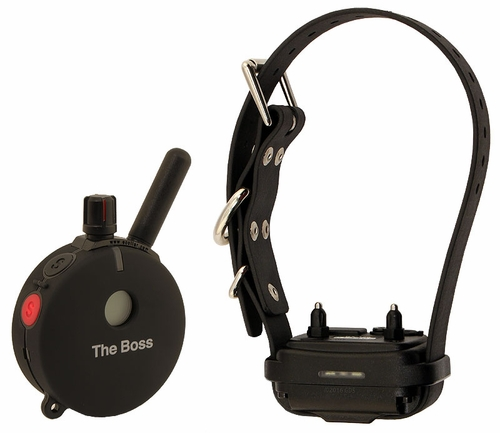 "Educator ""The Boss"" ET-800TS-A Remote Training Collar 1-dog"