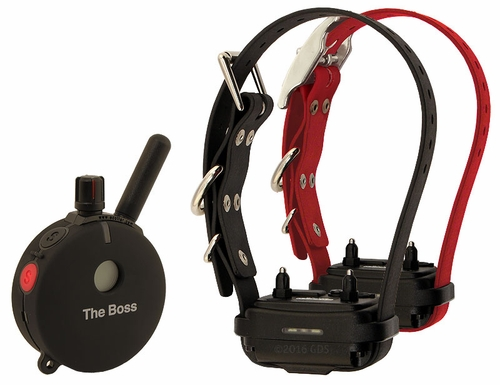"Educator ""The Boss"" ET-802 Remote Training Collar 2-dog"