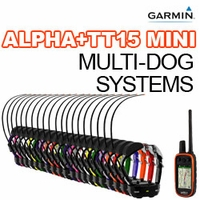 buy discount  Garmin Alpha + TT15 MINI Multi-Dog Systems