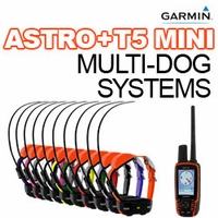buy discount  Garmin Astro + T5 MINI Multi-Dog Systems
