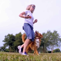 buy discount  Here's Why You Should Train Your Dog