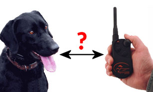 How much range do you need in a remote training collar?