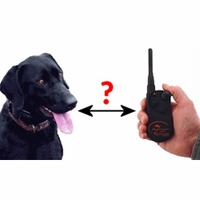 buy  How much range do you need in a remote training collar?