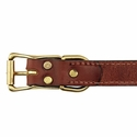 buy discount  Hunt Dog Leather Center-Ring Collar Back of Buckle Detail