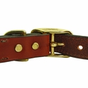 buy discount  Leather Dog Collar Back of Buckle Detail