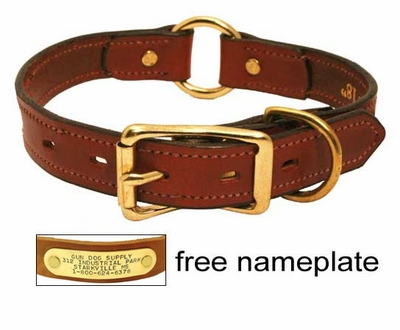 Dog Collars With Names On Them Uk