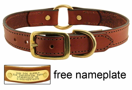 Leather Dog Collar with Name Plate