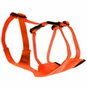buy discount  Mendota Skid Plate - Orange