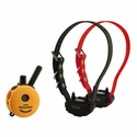 buy discount  Mini Educator ET-302TS Remote Training Collar 2-dog