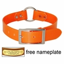 buy discount  ORANGE 1 in. Day Glow Center Ring Collar