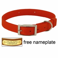 buy discount  ORANGE Field Grade Treated Nylon Standard Dog Collar - #1692