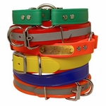 buy discount  Other Dog Collars (FREE ID PLATES!)
