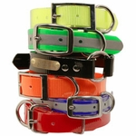 buy discount  Day Glow and Reflective Dog Collars (FREE ID PLATES!)