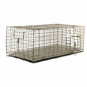 buy discount  Pigeon Carrier 24 in. x 12 in. PC2412/KD/T by SW Cage