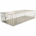 buy discount  Pigeon Carrier 36 in. x 16 in. PC3616/KD/T by SW Cage