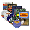 buy discount  Pointing Dog Videos & DVDs