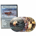 buy discount  Poudre River Gundogs -- Training the Pointing Retriever 4-DVD Set with Gary Buys
