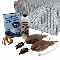 buy  Quail Hunting Related Items