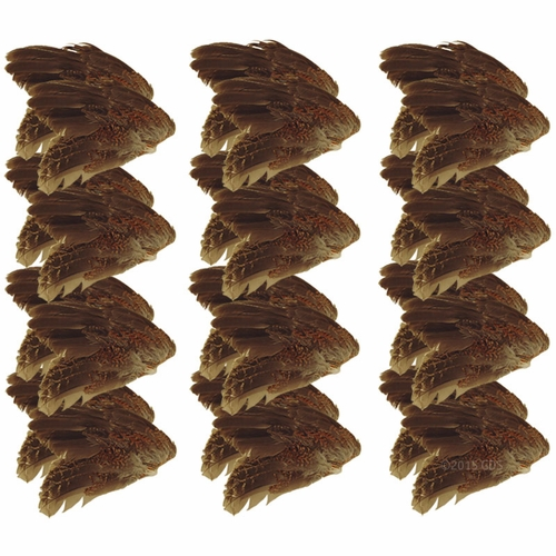 Quail Wings -- 24 Pack