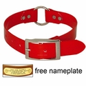 buy discount  RED 1 in. Day Glow Center Ring Collar